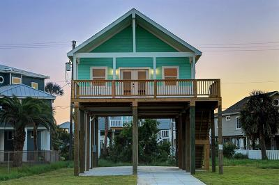 Galveston Single Family Home For Sale: 4216 Oleander Drive