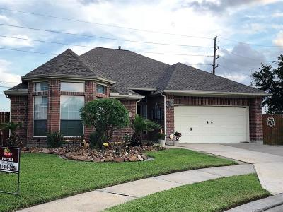 Tomball Single Family Home For Sale: 12023 Brantley Haven Drive