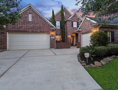Houston Single Family Home For Sale: 12402 Santiago Cove Lane