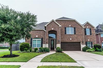 Friendswood Single Family Home For Sale: 2501 Ivy Stone Lane