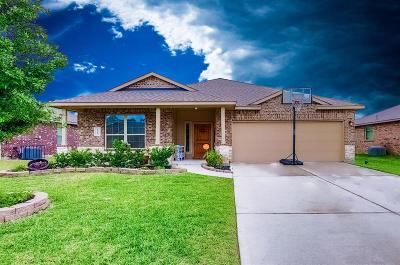 Porter Single Family Home For Sale: 22563 Stillwater Valley Lane