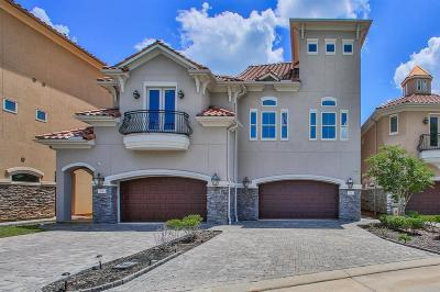 Montgomery Single Family Home For Sale: 134 La Vie Drive