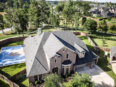 Houston Single Family Home For Sale: 16019 Harbour Bend Lane