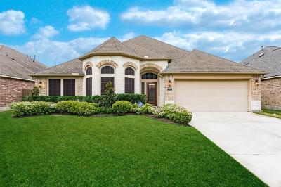 Rosenberg Single Family Home For Sale: 5227 Belvedere Drive