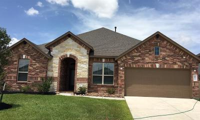 Katy Single Family Home For Sale: 4835 Tuscany Farm Drive
