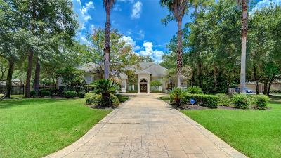Houston Single Family Home For Sale: 13410 Pinnacle Place