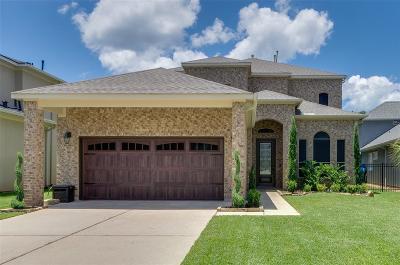 Montgomery Single Family Home For Sale: 16872 Falcon Sound Drive