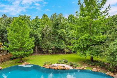 Indian Springs, Woodlands Village Indian Springs Single Family Home For Sale: 7 Glenleigh Place
