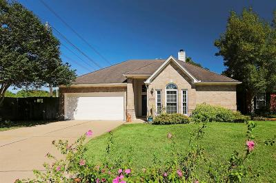 Houston Single Family Home For Sale: 12958 Briarwest Circle