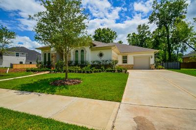 Missouri City Single Family Home For Sale: 51 Marino Drive