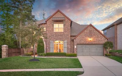 Conroe Single Family Home For Sale: 1007 Carissa Holly Drive