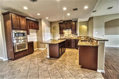 Pearland Single Family Home For Sale: 1715 Brighton Brook Lane