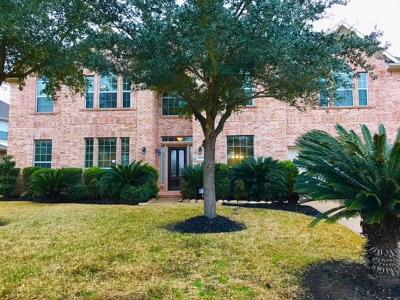 Fort Bend County Single Family Home For Sale: 2003 Rustic Oak Lane
