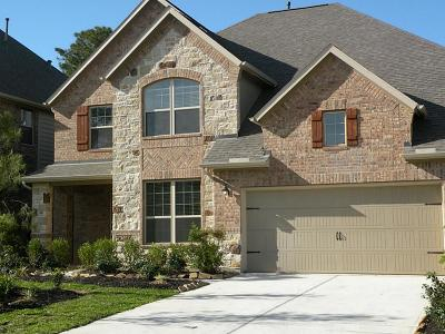 The Woodlands Single Family Home For Sale: 167 Lindenberry Circle