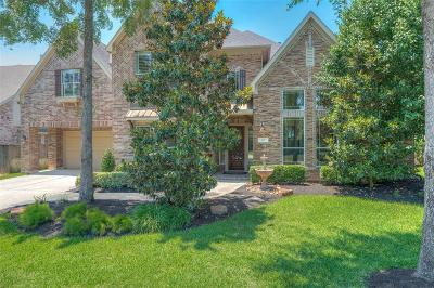 The Woodlands Single Family Home For Sale: 115 Fair Manor Circle