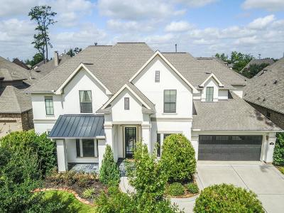 The Woodlands Single Family Home For Sale: 18 Spring Basket Trl