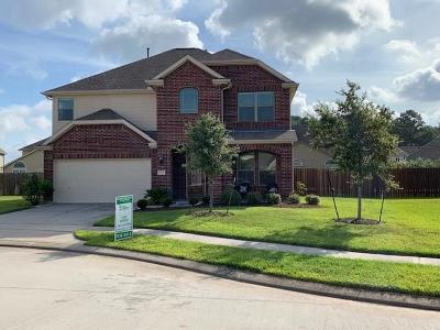 Tomball Single Family Home For Sale: 17710 Jacobs Ladder Court