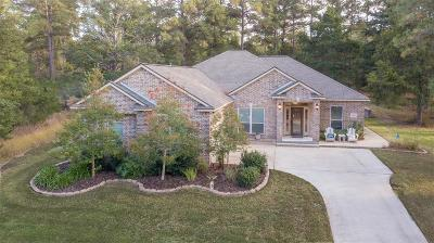 New Ulm Single Family Home For Sale: 103 Riviera Court