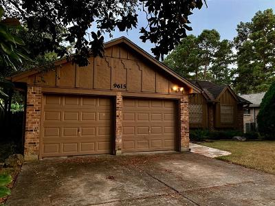 Spring Single Family Home For Sale: 9615 Galston Lane