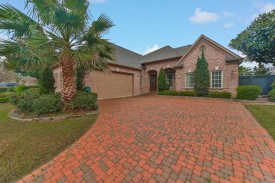 Houston Single Family Home For Sale: 3134 Rosemary Park Lane
