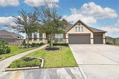 Katy Single Family Home For Sale: 25707 Oakwood Knoll Drive