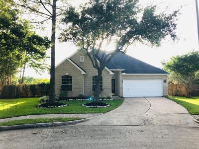 Pearland Single Family Home For Sale: 3503 Parkshire Drive