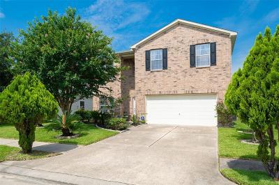Single Family Home For Sale: 2715 Indigo Stone Lane