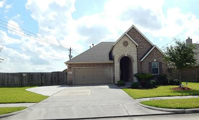 Houston Single Family Home For Sale: 6918 New Forest Parkway