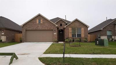 Texas City Single Family Home For Sale: 8721 Explorer Drive