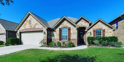 Spring Single Family Home For Sale: 6214 Pinewood Heights Drive