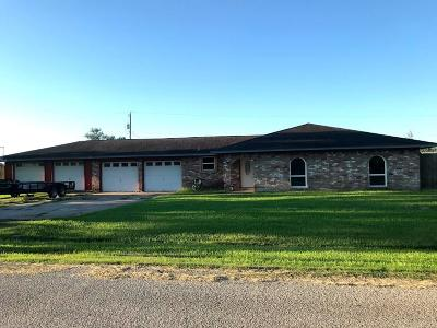 Brazoria Single Family Home For Sale: 3110 County Road 415