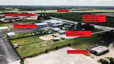 Tomball Farm & Ranch For Sale: 20240 N Cypress Rosehill Rd Divide N