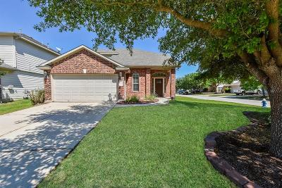 Tomball Single Family Home For Sale: 20202 Ribbonwood Point Court
