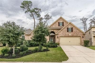 Tomball Single Family Home For Sale: 47 Tioga Place