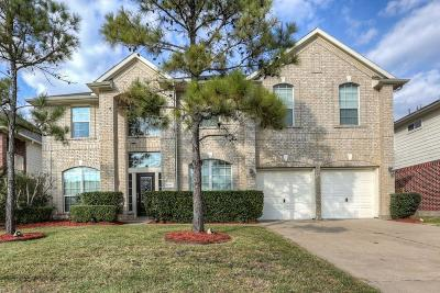 Pearland Single Family Home For Sale: 13207 Hampton Bay Drive