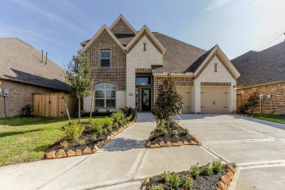 Missouri City Single Family Home For Sale: 10006 Harbor Light Drive