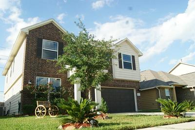Katy Single Family Home For Sale: 24738 Lakecrest Village Drive