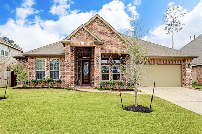 Tomball Single Family Home For Sale: 22711 Alderdale