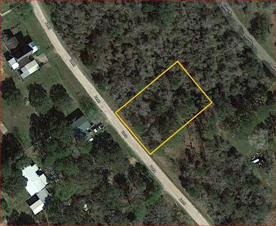 Brazoria Residential Lots & Land For Sale: Lot 4 Sexto