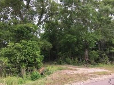 Brazoria Residential Lots & Land For Sale: 3870 County Road 651