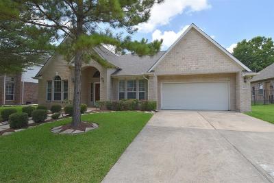 Single Family Home For Sale: 10623 Opal Ridge Drive