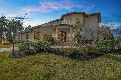 Spring Single Family Home For Sale: 6 E Shadow Creek Villas Loop