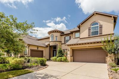 Sugar Land Single Family Home For Sale: 3122 Barrons Way
