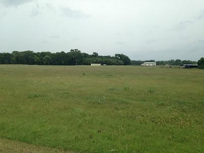 Wharton County Farm & Ranch For Sale: Engbrock