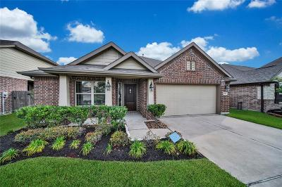Tomball Single Family Home For Sale: 18227 Russett Green Drive