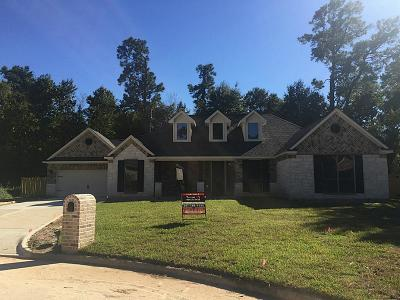 Harris County Single Family Home For Sale: 15403 Misty Hollow Drive