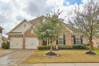 Houston Single Family Home For Sale: 17911 Adobe Trace Lane