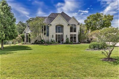 Richmond Single Family Home For Sale: 6711 Brazos Lakes Drive