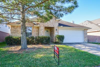 Katy Single Family Home For Sale: 18235 Silver Timber Court