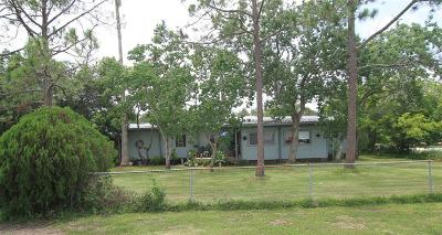 Brazoria Single Family Home For Sale: 6004 Pine Street